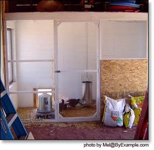 en Coop Plans — ByExample.com Indoor Poultry House Designs on indoor garden, indoor pig house, indoor dog house, indoor pet houses, indoor dog kennels, indoor green house, indoor duck house, indoor cat house, indoor rabbit house, indoor hot tub,