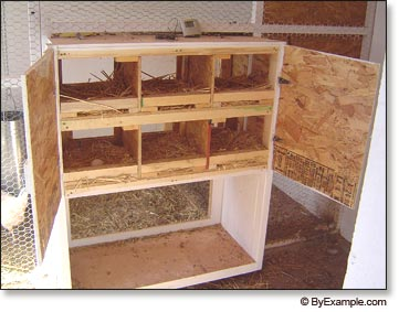 Just Coop Plans To Build Chicken Nesting Boxes Info